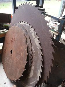Old circular saw blades